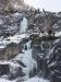 Eiszeit und Chamäleon