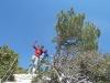 Glücklich nach 3,5 Klettertagen am berühmten Ausstiegsbaum